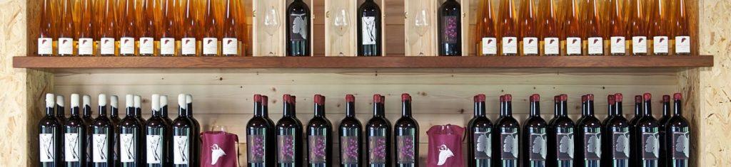 Serata degustazione vini La Rasenna